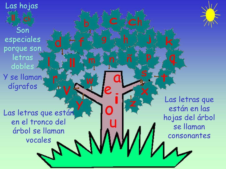 Las letras que están en el tronco del árbol se llaman vocales Las letras que están en las hojas del árbol se llaman consonantes Las hojas Son especiales porque son letras dobles Y se llaman dígrafos