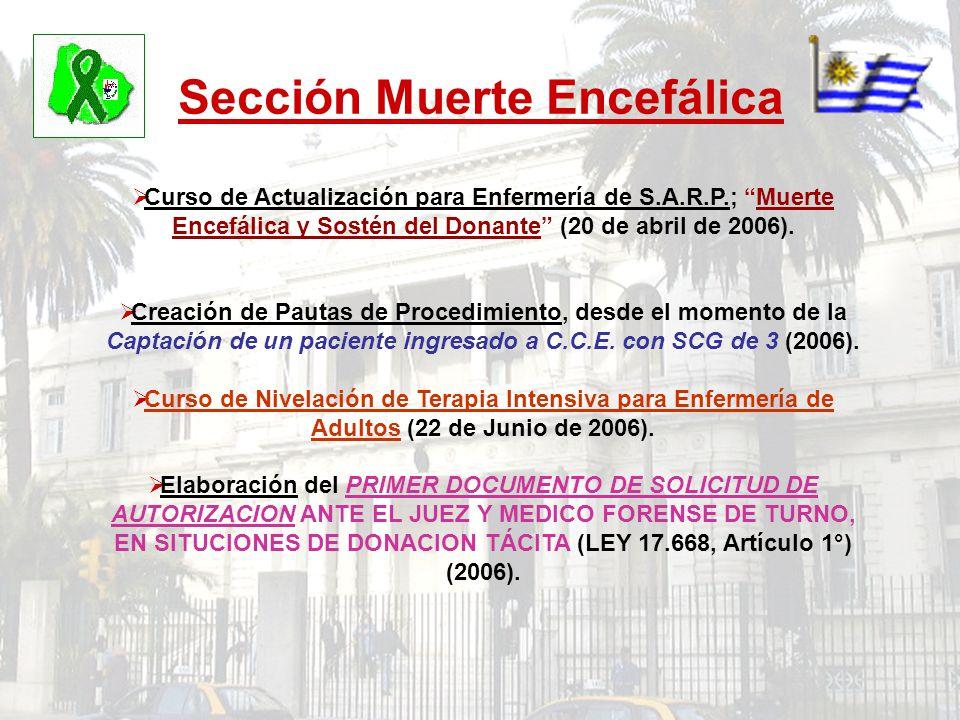 Sección Muerte Encefálica Curso de Actualización para Enfermería de S.A.R.P.; Muerte Encefálica y Sostén del Donante (20 de abril de 2006). Creación d