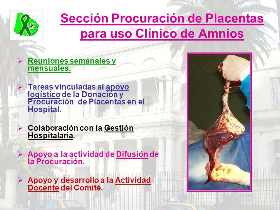 Sección Procuración de Placentas para uso Clínico de Amnios Reuniones semanales y mensuales. Tareas vinculadas al apoyo logístico de la Donación y Pro