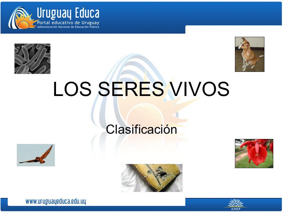 LOS SERES VIVOS Clasificación