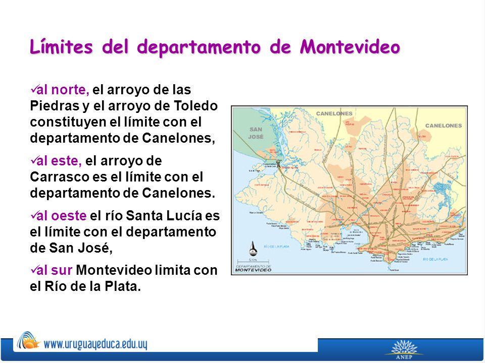 Montevideo posee una superficie de 530 kilómetros cuadrados.