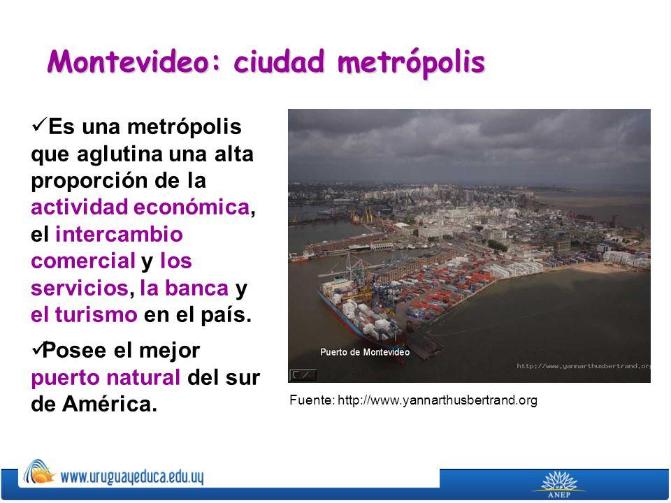 El departamento de Montevideo cuenta con dos áreas claramente definidas: la ciudad o zona urbana y la zona rural.