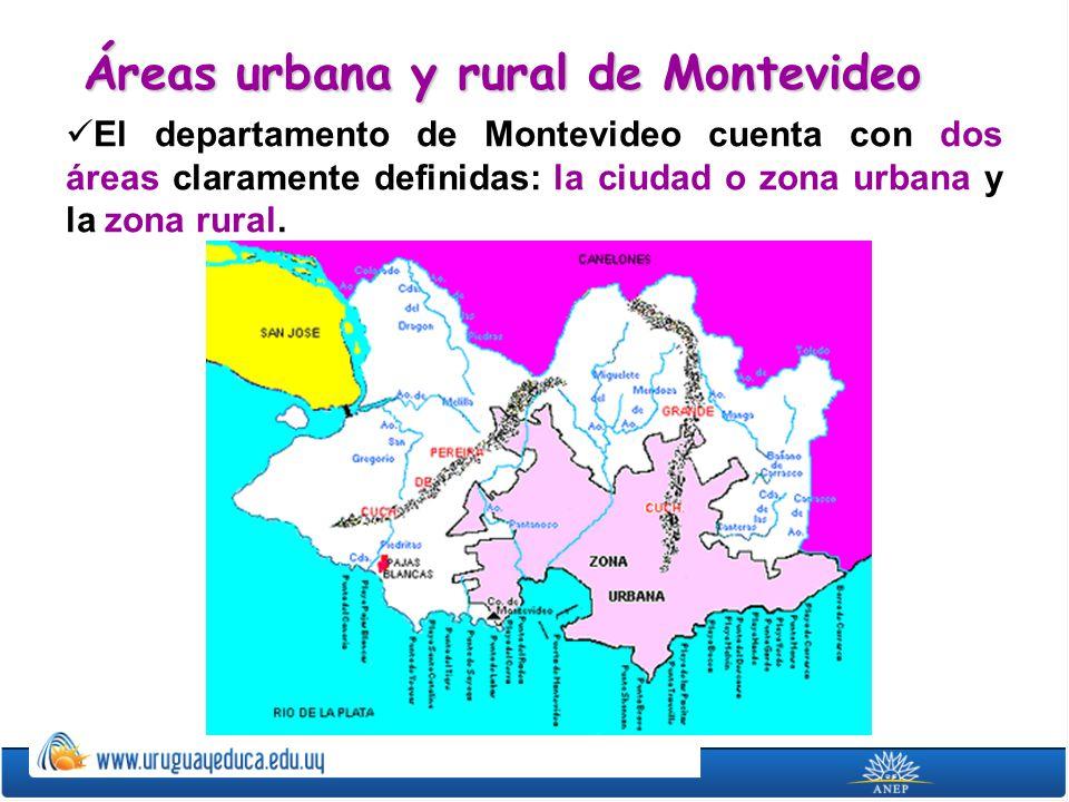 Las áreas urbana y suburbana de Montevideo ocupan el 37% de la superficie del departamento.