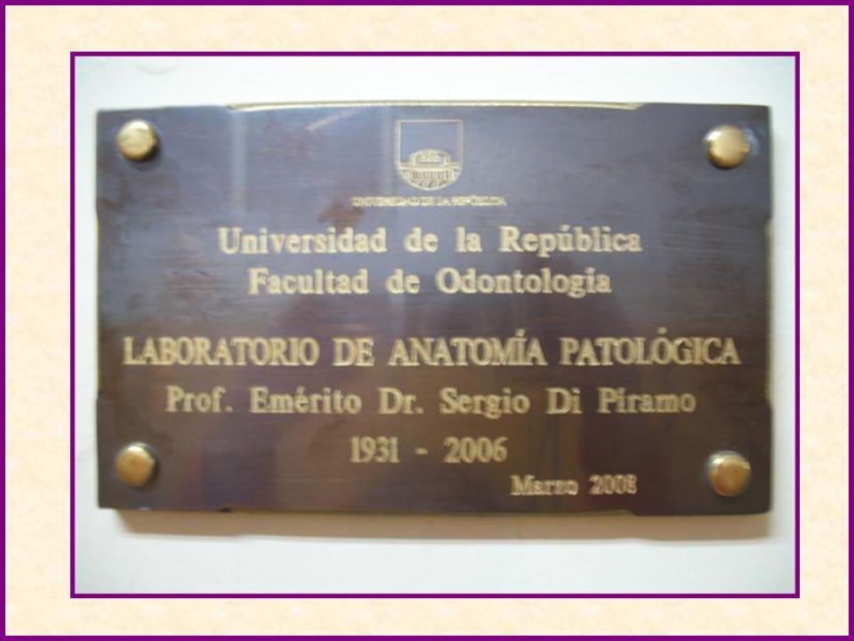 HOMENAJE El Consejo de Facultad y el Consejo Directivo Central, de acuerdo a la normativa vigente, resolvieron homenajear al Profesor Emérito Dr.