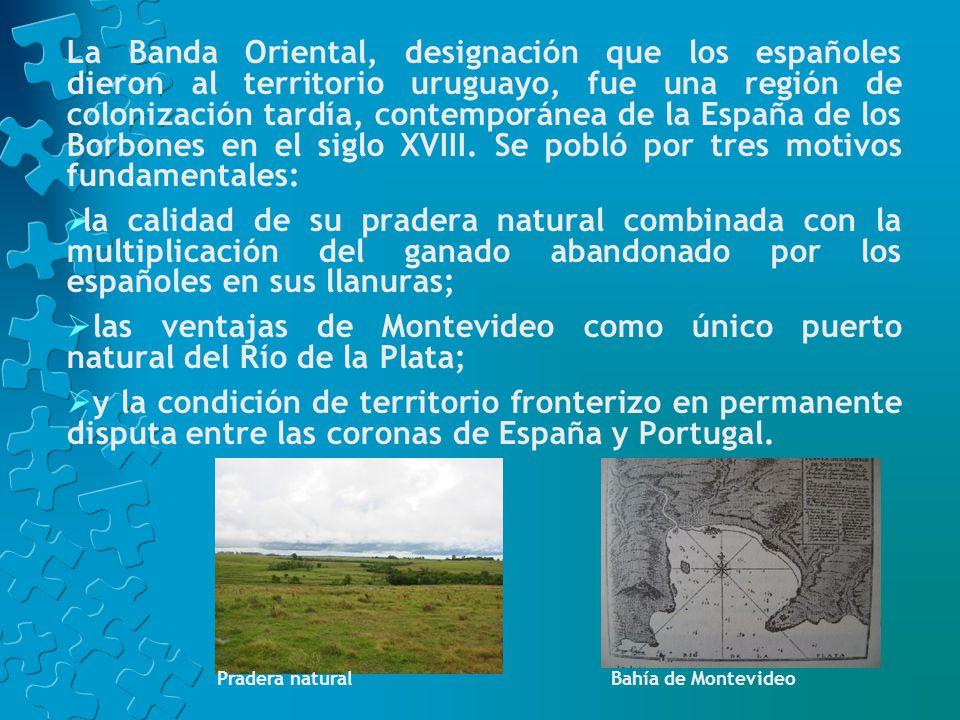 Los gauchos e indios odiaban todas las medidas que provenían del Cabildo de Montevideo o de su Gobernador.