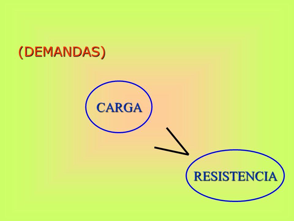 CARGA (DEMANDAS) RESISTENCIA