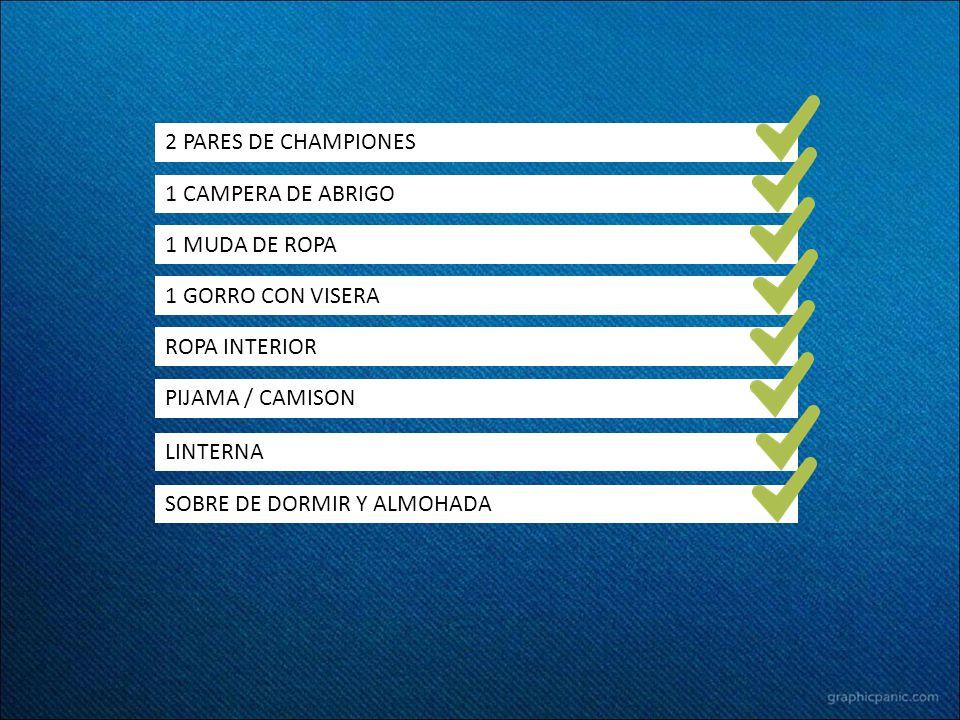2 PARES DE CHAMPIONES 1 CAMPERA DE ABRIGO 1 GORRO CON VISERA 1 MUDA DE ROPA ROPA INTERIOR PIJAMA / CAMISON LINTERNA SOBRE DE DORMIR Y ALMOHADA