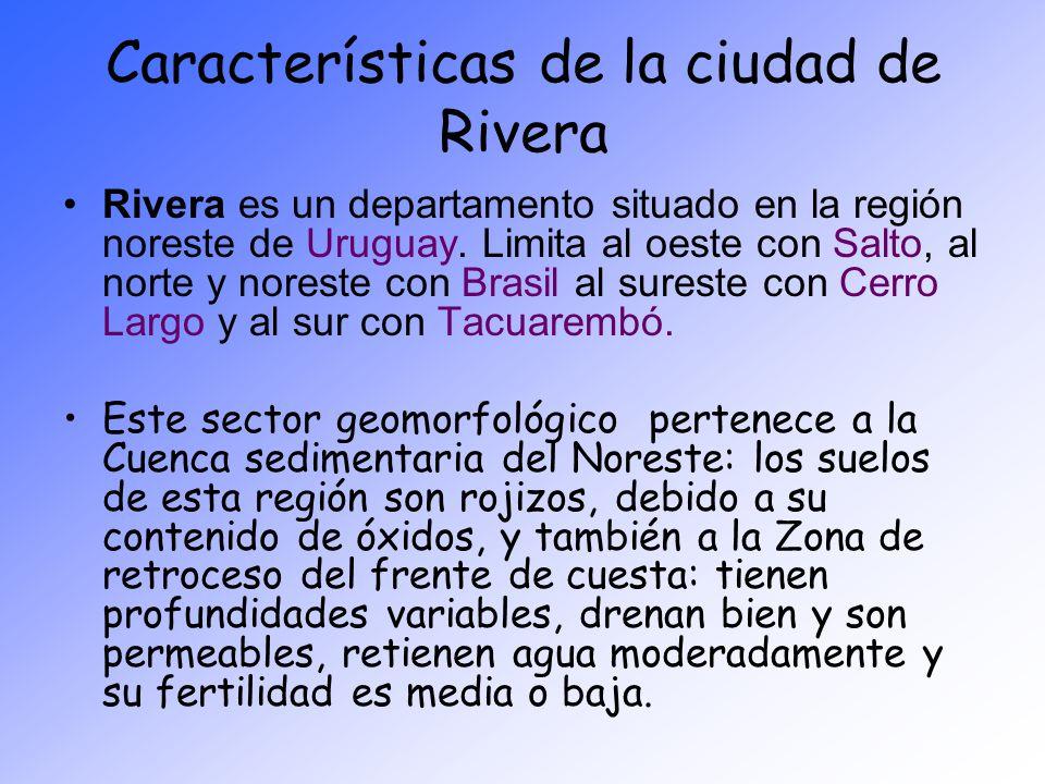 Características de la ciudad de Rivera Rivera es un departamento situado en la región noreste de Uruguay. Limita al oeste con Salto, al norte y norest