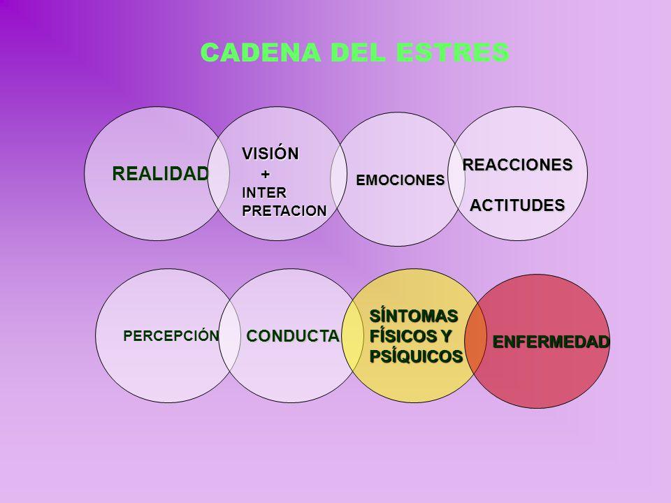 EMOCIONES EMOCIONES REALIDADREACCIONESACTITUDES VISIÓN +INTERPRETACION CADENA DEL ESTRES PERCEPCIÓNCONDUCTASÍNTOMAS FÍSICOS Y PSÍQUICOS ENFERMEDAD