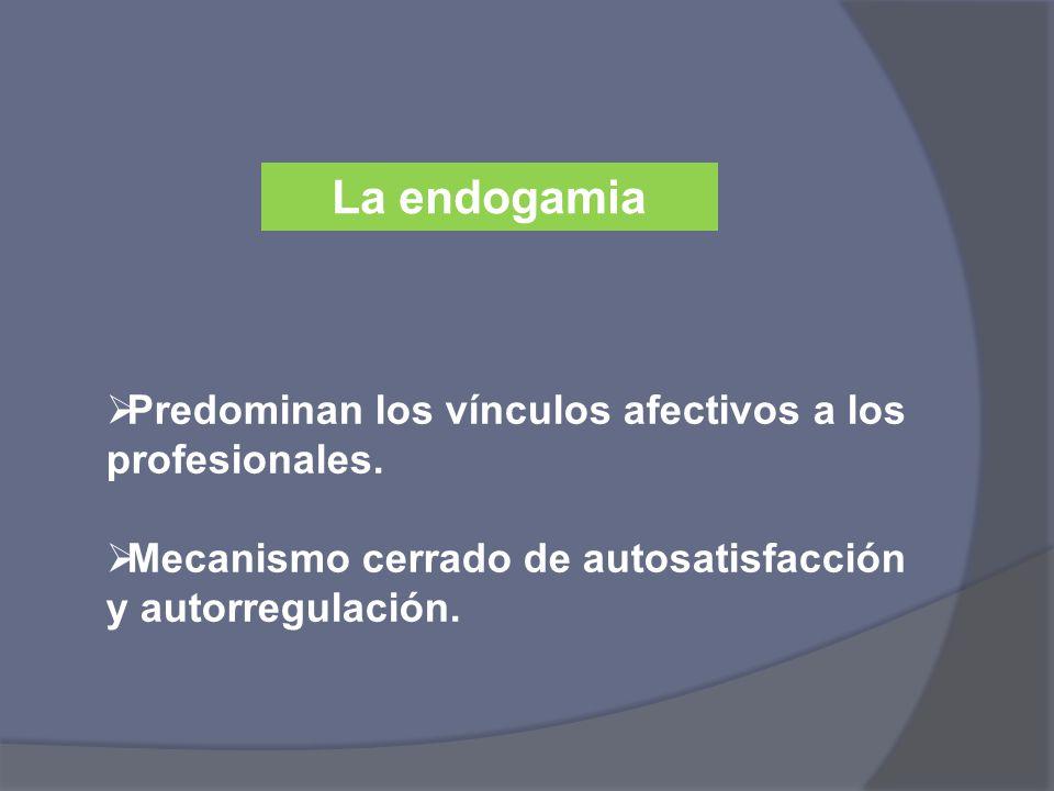 La endogamia Predominan los vínculos afectivos a los profesionales. Mecanismo cerrado de autosatisfacción y autorregulación.
