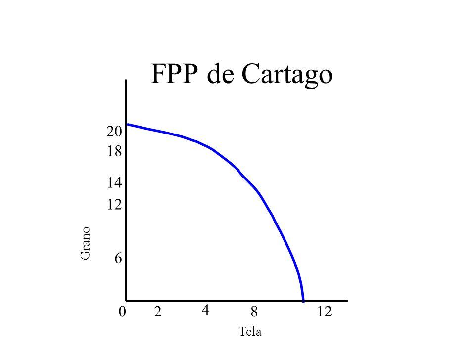 FPP de Cartago Tela Grano 6 18 4 0812 2 14 20