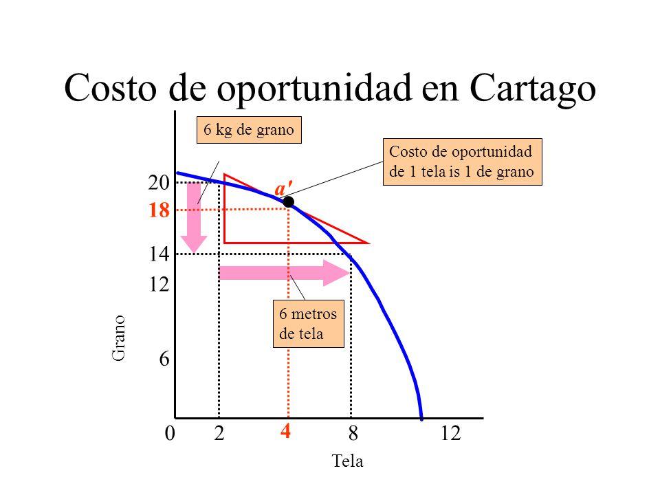 Costo de oportunidad en Cartago Tela Grano 6 18 4 0812 2 14 20 6 metros de tela a' Costo de oportunidad de 1 tela is 1 de grano 6 kg de grano