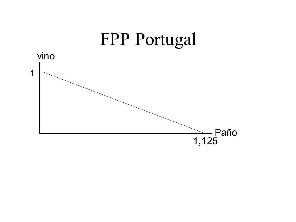 Paño vino 1,125 1 FPP Portugal