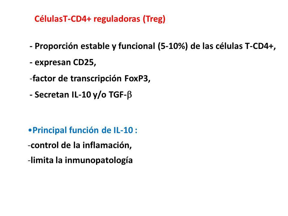 - Proporción estable y funcional (5-10%) de las células T-CD4+, - expresan CD25, -factor de transcripción FoxP3, - Secretan IL-10 y/o TGF- CélulasT-CD4+ reguladoras (Treg) Principal función de IL-10 : -control de la inflamación, -limita la inmunopatología
