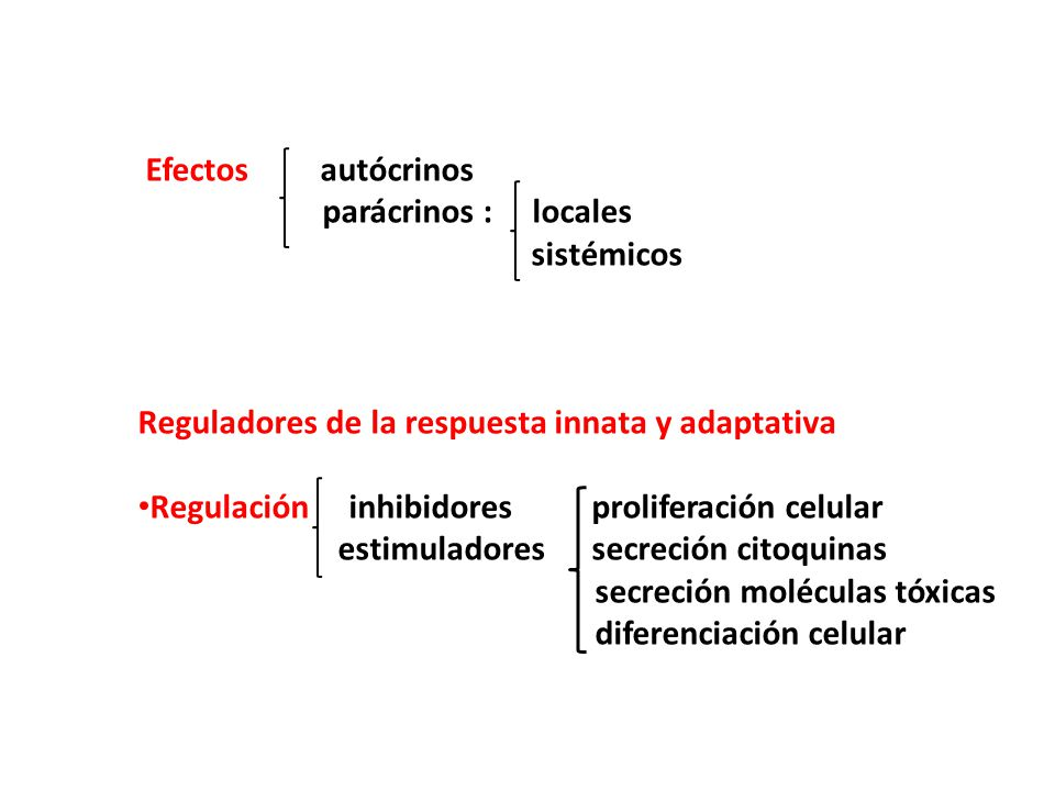 Efectos autócrinos parácrinos : locales sistémicos Reguladores de la respuesta innata y adaptativa Regulación inhibidores proliferación celular estimuladores secreción citoquinas secreción moléculas tóxicas diferenciación celular