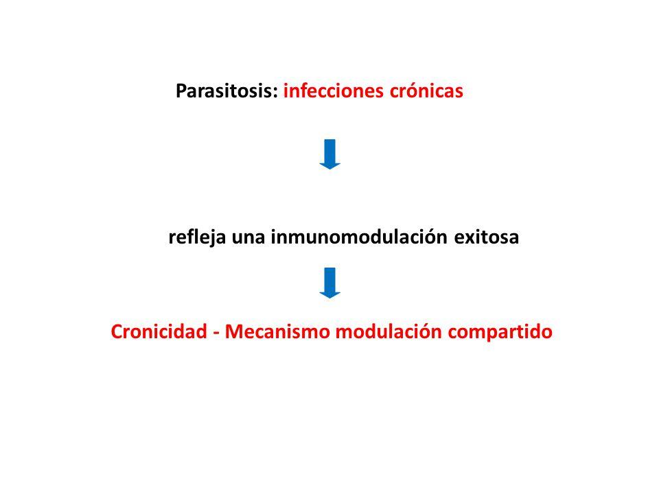Parasitosis: infecciones crónicas refleja una inmunomodulación exitosa Cronicidad - Mecanismo modulación compartido