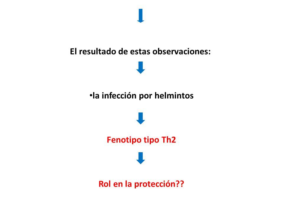 El resultado de estas observaciones: la infección por helmintos Fenotipo tipo Th2 Rol en la protección??