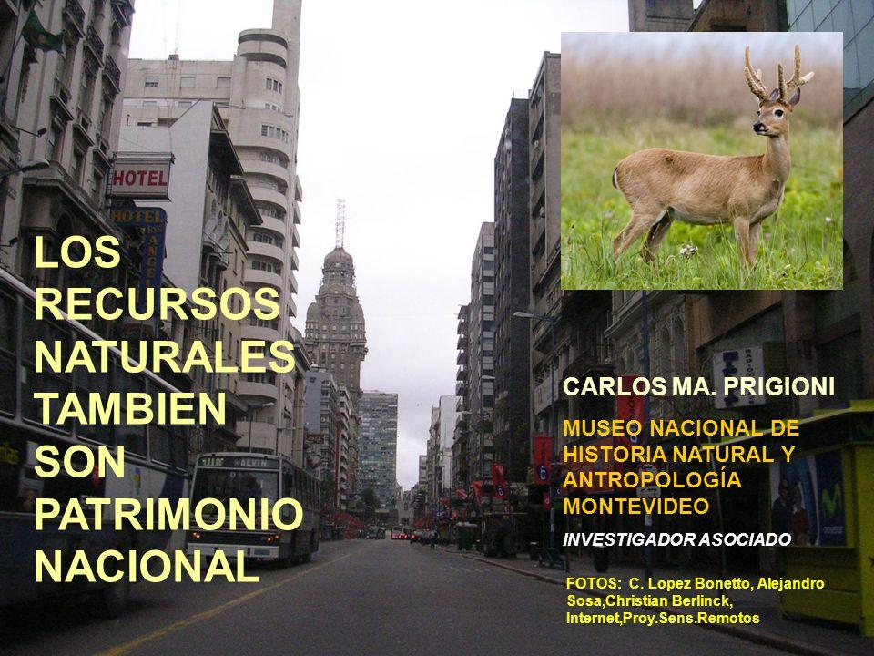 FOTOS: C. Lopez Bonetto, Alejandro Sosa,Christian Berlinck, Internet,Proy.Sens.Remotos LOS RECURSOS NATURALES TAMBIEN SON PATRIMONIO NACIONAL CARLOS M