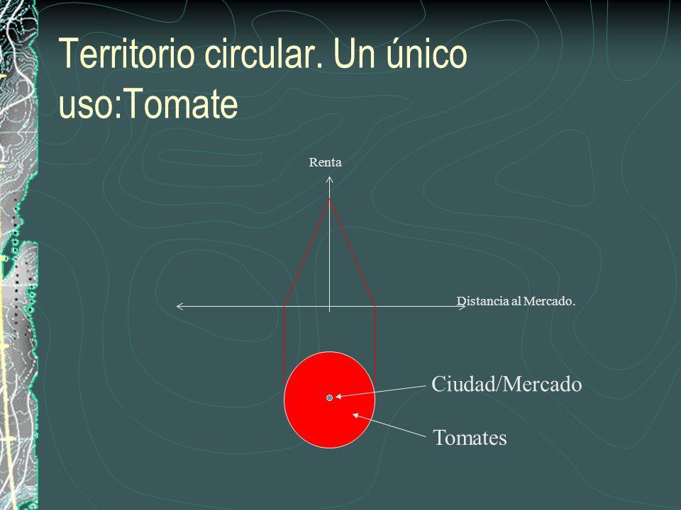 Territorio circular. Un único uso:Tomate Distancia al Mercado. Renta Ciudad/Mercado Tomates
