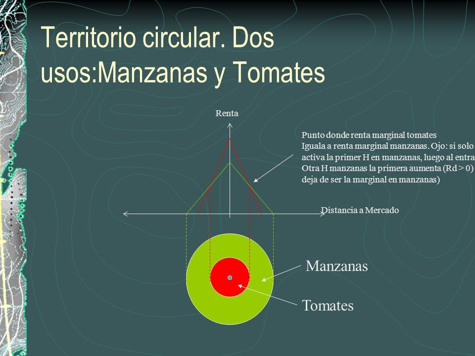 Territorio circular. Dos usos:Manzanas y Tomates Renta Tomates Manzanas Distancia a Mercado Punto donde renta marginal tomates Iguala a renta marginal