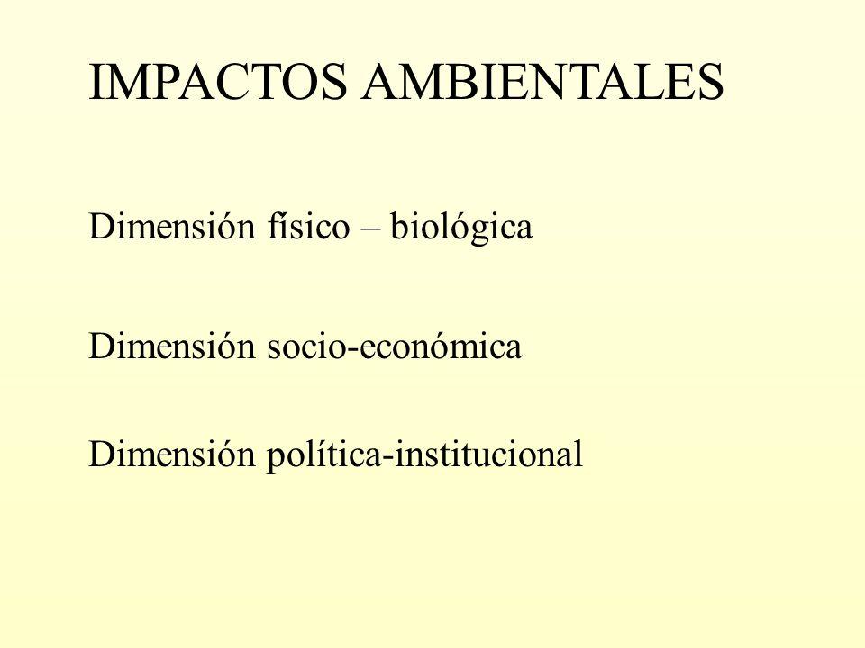 Dimensión socio-económica Dimensión política-institucional Dimensión físico – biológica IMPACTOS AMBIENTALES
