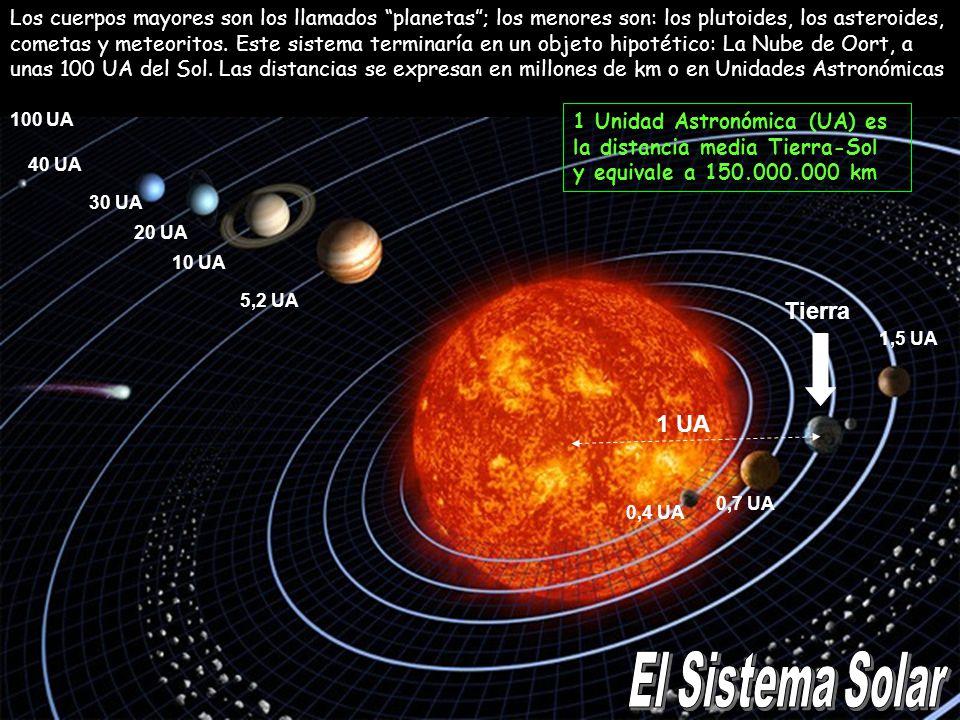 1 UA 5,2 UA 10 UA 20 UA 30 UA 40 UA 1,5 UA 0,7 UA 0,4 UA 100 UA Los cuerpos mayores son los llamados planetas; los menores son: los plutoides, los ast