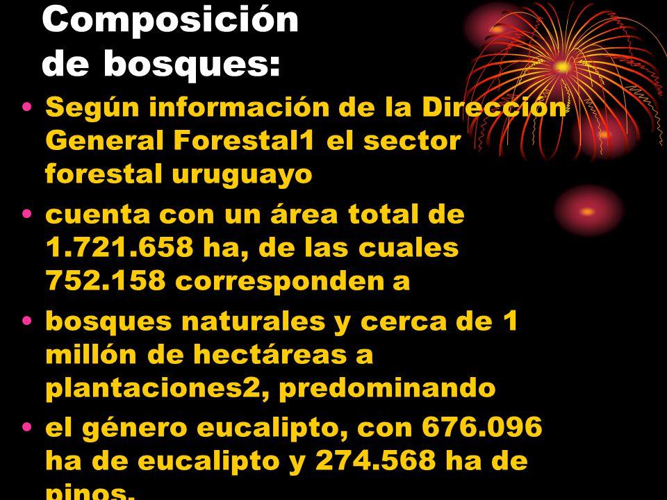 Composición de bosques: Según información de la Dirección General Forestal1 el sector forestal uruguayo cuenta con un área total de 1.721.658 ha, de l