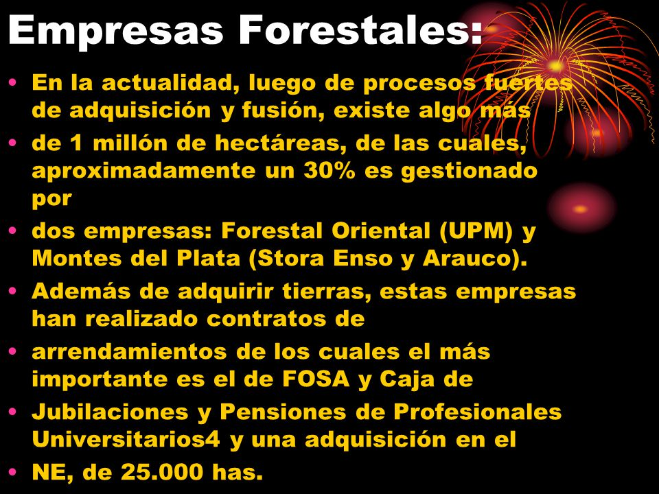 Empresas Forestales: En la actualidad, luego de procesos fuertes de adquisición y fusión, existe algo más de 1 millón de hectáreas, de las cuales, apr