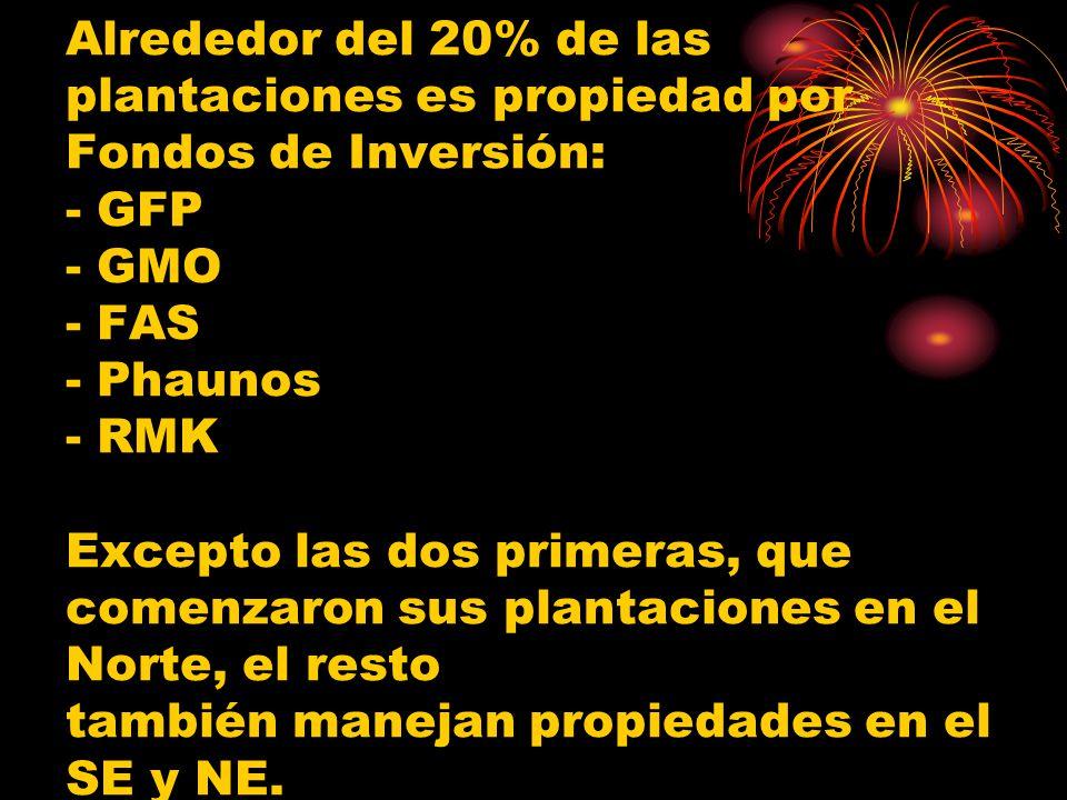 Alrededor del 20% de las plantaciones es propiedad por Fondos de Inversión: - GFP - GMO - FAS - Phaunos - RMK Excepto las dos primeras, que comenzaron