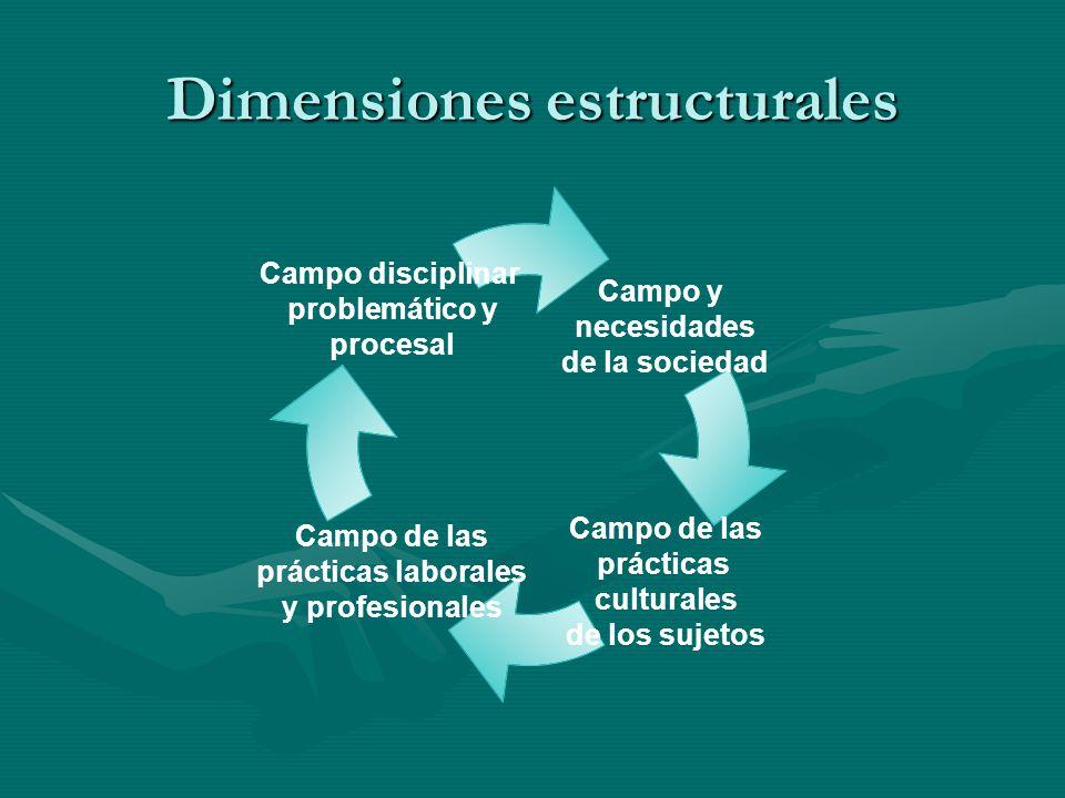 Dimensiones estructurales Campo y necesidades de la sociedad Campo de las prácticas culturales de los sujetos Campo de las prácticas laborales y profesionales Campo disciplinar problemático y procesal
