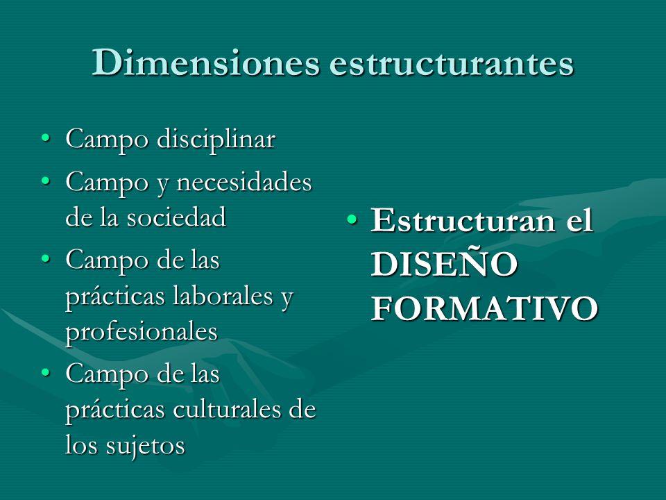 Dimensiones estructurantes Campo disciplinarCampo disciplinar Campo y necesidades de la sociedadCampo y necesidades de la sociedad Campo de las prácti