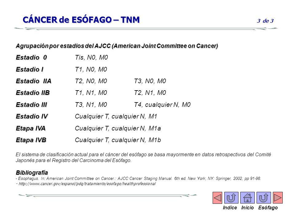 CÁNCER de ESÓFAGO – TNM CÁNCER de ESÓFAGO – TNM 3 de 3 Agrupación por estadios del AJCC (American Joint Committee on Cancer) Estadio 0 Estadio 0Tis, N
