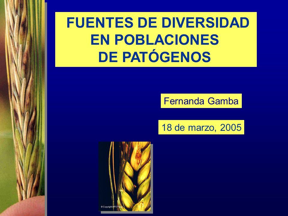 FUENTES DE DIVERSIDAD EN POBLACIONES DE PATÓGENOS 18 de marzo, 2005 Fernanda Gamba