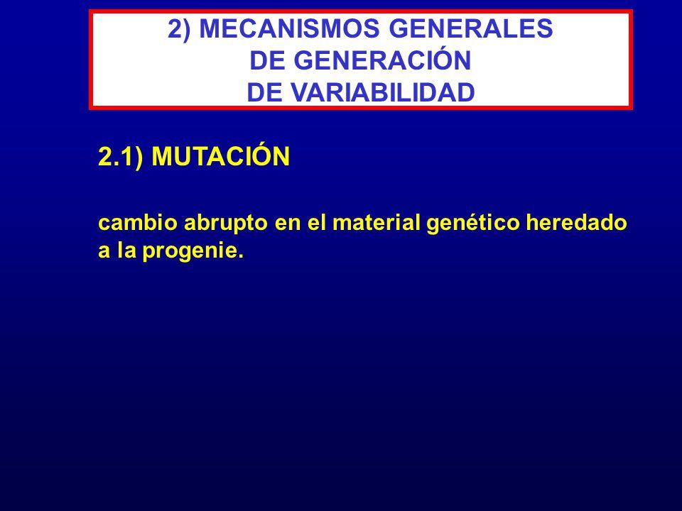 cambio abrupto en el material genético heredado a la progenie. 2.1) MUTACIÓN 2) MECANISMOS GENERALES DE GENERACIÓN DE VARIABILIDAD
