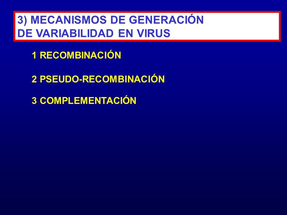 3) MECANISMOS DE GENERACIÓN DE VARIABILIDAD EN VIRUS 1 RECOMBINACIÓN 2 PSEUDO-RECOMBINACIÓN 3 COMPLEMENTACIÓN