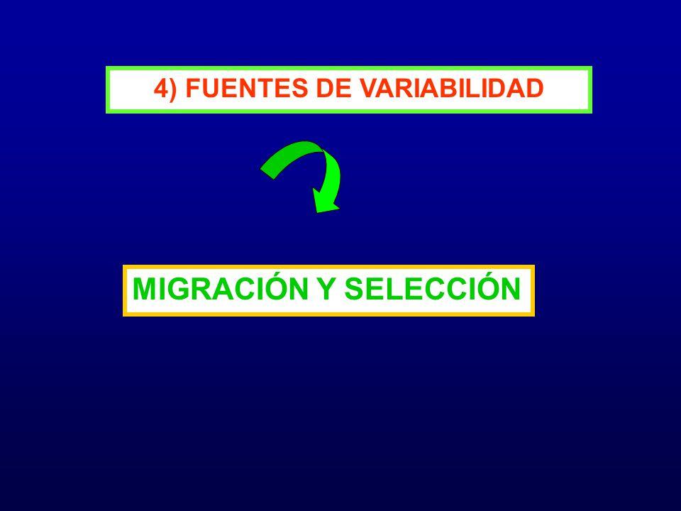 4) FUENTES DE VARIABILIDAD MIGRACIÓN Y SELECCIÓN