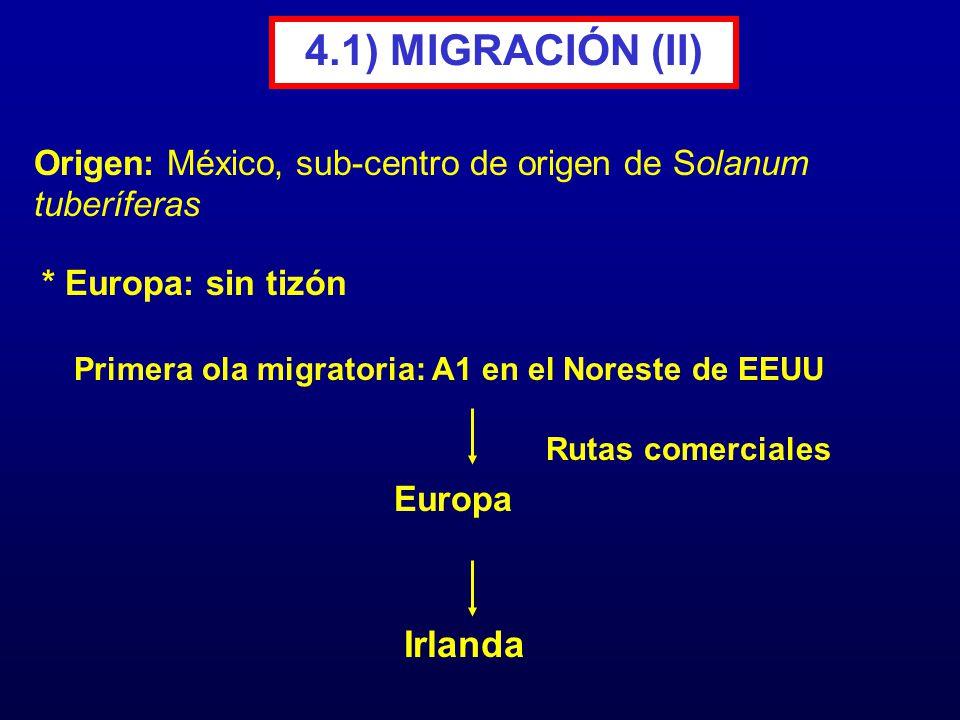 4.1) MIGRACIÓN (II) * Europa: sin tizón Primera ola migratoria: A1 en el Noreste de EEUU Irlanda Rutas comerciales Origen: México, sub-centro de orige