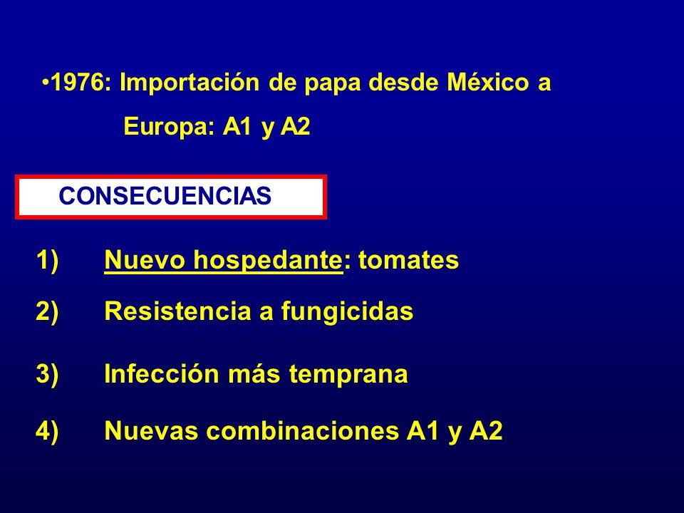 1976: Importación de papa desde México a Europa: A1 y A2 CONSECUENCIAS 1)Nuevo hospedante: tomates 2)Resistencia a fungicidas 4)Nuevas combinaciones A