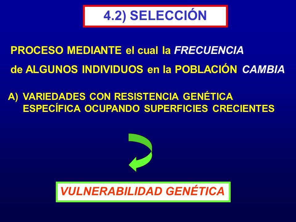 4.2) SELECCIÓN A)VARIEDADES CON RESISTENCIA GENÉTICA ESPECÍFICA OCUPANDO SUPERFICIES CRECIENTES PROCESO MEDIANTE el cual la FRECUENCIA de ALGUNOS INDI