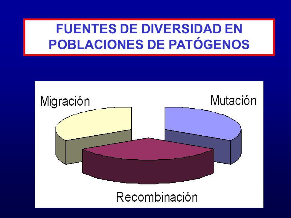 FUENTES DE DIVERSIDAD EN POBLACIONES DE PATÓGENOS