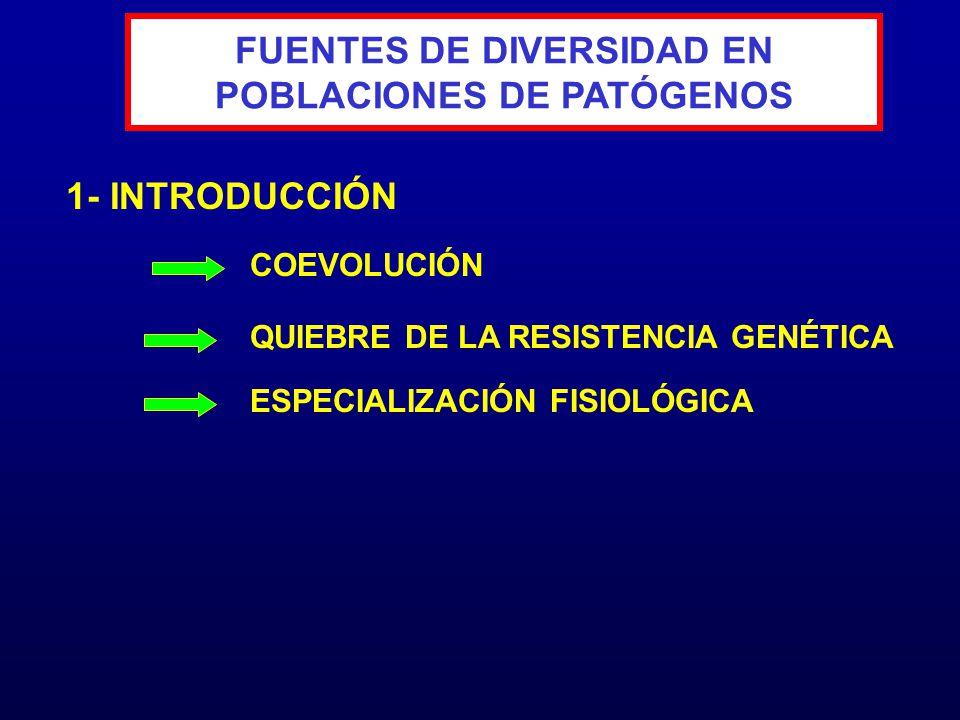 CONTRIBUCIONES DE LAS MUTACIONES COMO FUENTE DE VARIABILIDAD 1.- TASA DE MUTACIÓN 2.- NIVEL DE PLOIDÍA DEL PATÓGENO 3.- TAMAÑO DE LA POBLACIÓN 4.- VENTAJA SELECTIVA DEL MUTANTE