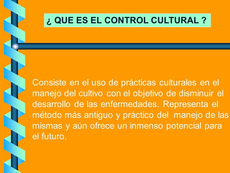 ¿ QUE ES EL CONTROL CULTURAL ? Consiste en el uso de prácticas culturales en el manejo del cultivo con el objetivo de disminuir el desarrollo de las e