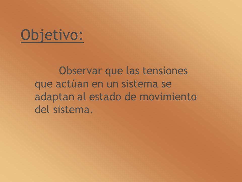 Objetivo: Observar que las tensiones que actúan en un sistema se adaptan al estado de movimiento del sistema.