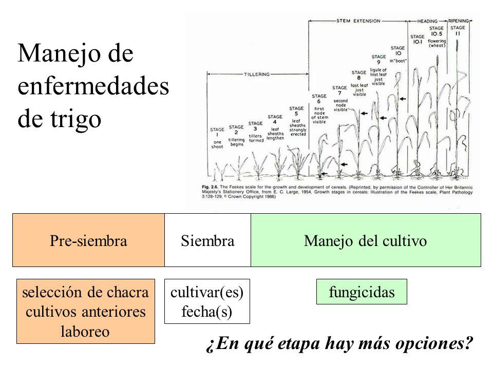 Manejo integrado de patógenos: Patógenos de suelo vs. de parte aérea: Enfermedades mono- o policíclicas Tasa de desarrollo de la epidemia Efectividad