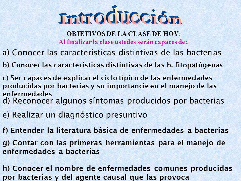 OBJETIVOS DE LA CLASE DE HOY: Al finalizar la clase ustedes serán capaces de:. a) Conocer las características distintivas de las bacterias b) Conocer