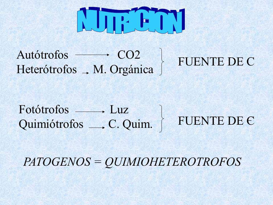 Autótrofos CO2 Heterótrofos M. Orgánica FUENTE DE C Fotótrofos Luz Quimiótrofos C. Quim. FUENTE DE Є PATOGENOS = QUIMIOHETEROTROFOS