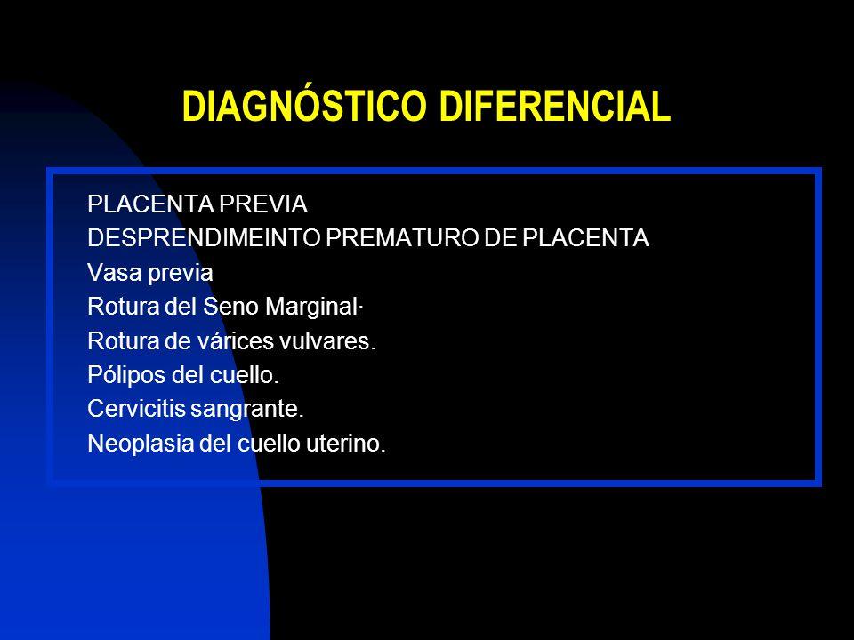 PLACENTA PREVIA DESPRENDIMEINTO PREMATURO DE PLACENTA Vasa previa Rotura del Seno Marginal· Rotura de várices vulvares. Pólipos del cuello. Cervicitis
