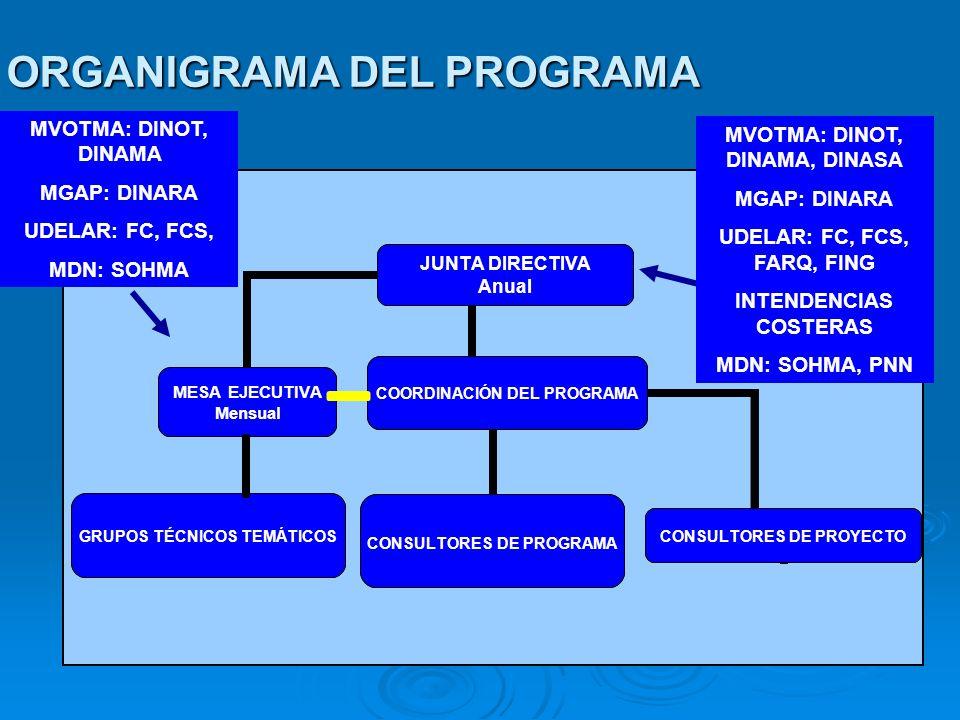 ORGANIGRAMA DEL PROGRAMA JUNTA DIRECTIVA Anual GRUPOS TÉCNICOS TEMÁTICOS CONSULTORES DE PROGRAMA MESA EJECUTIVA Mensual COORDINACIÓN DEL PROGRAMA CONS