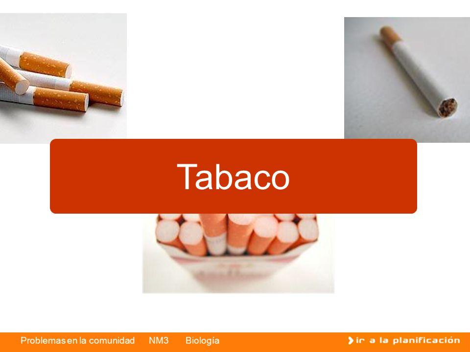 Problemas en la comunidad NM3 Biología Tabaco