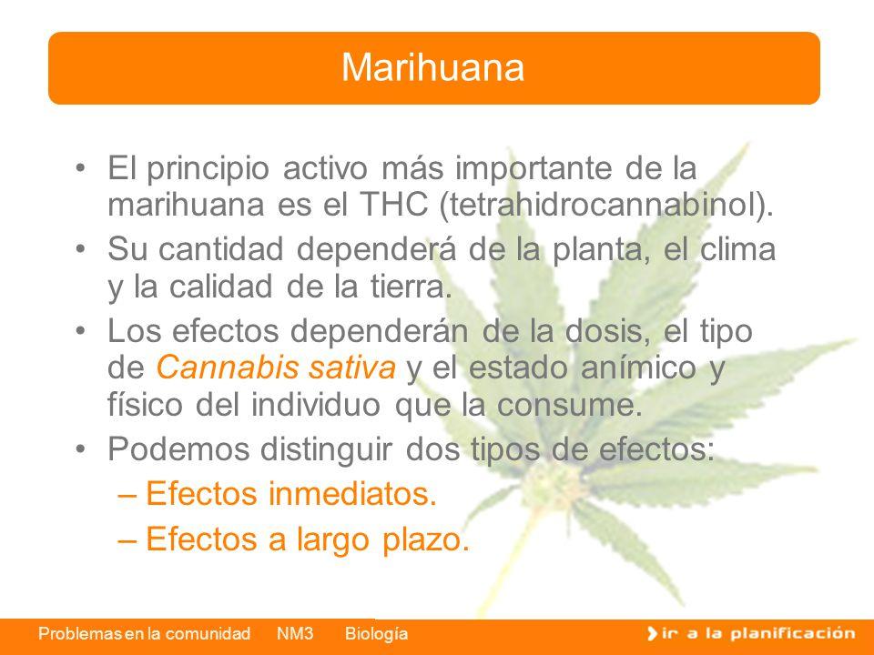 Problemas en la comunidad NM3 Biología El principio activo más importante de la marihuana es el THC (tetrahidrocannabinol). Su cantidad dependerá de l